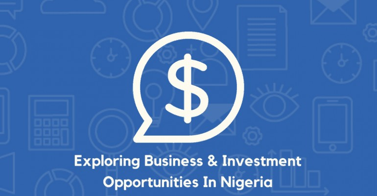 Business and Investment Opportunities in Naija Blog Graphic